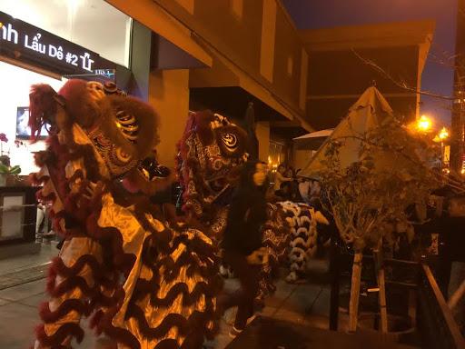 1. Lion Dancing at Night