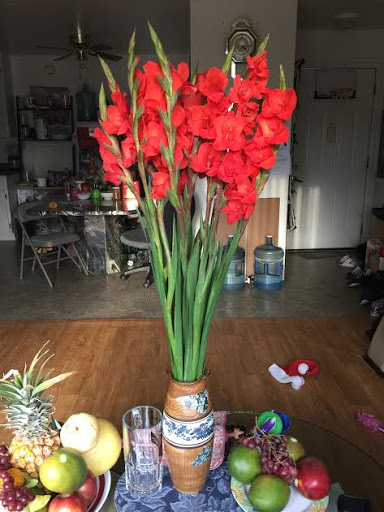 6. Red flowers